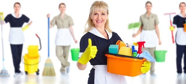 Image result for Professional Cleaners