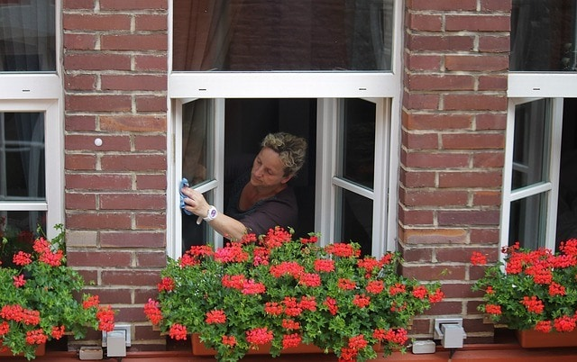 Window Cleaning Tips for Apartment Dwellers